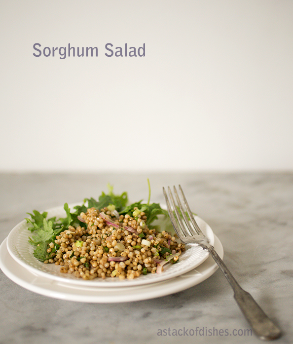 Healthy Sorghum Salad~ A Stack of Dishes.com